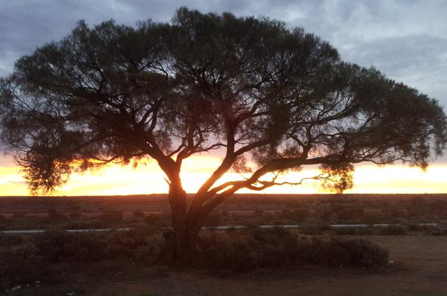 Aussi-Wahn und Outback-Fieber: Was mir an Australien am meisten fehlt (Teil 3)