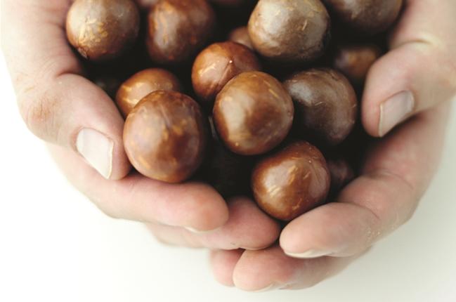 Schon eine Handvoll Macadamias pro Tag reicht