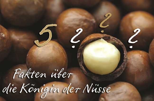 Schon gewusst? 5 Fakten über die Australische Macadamia!
