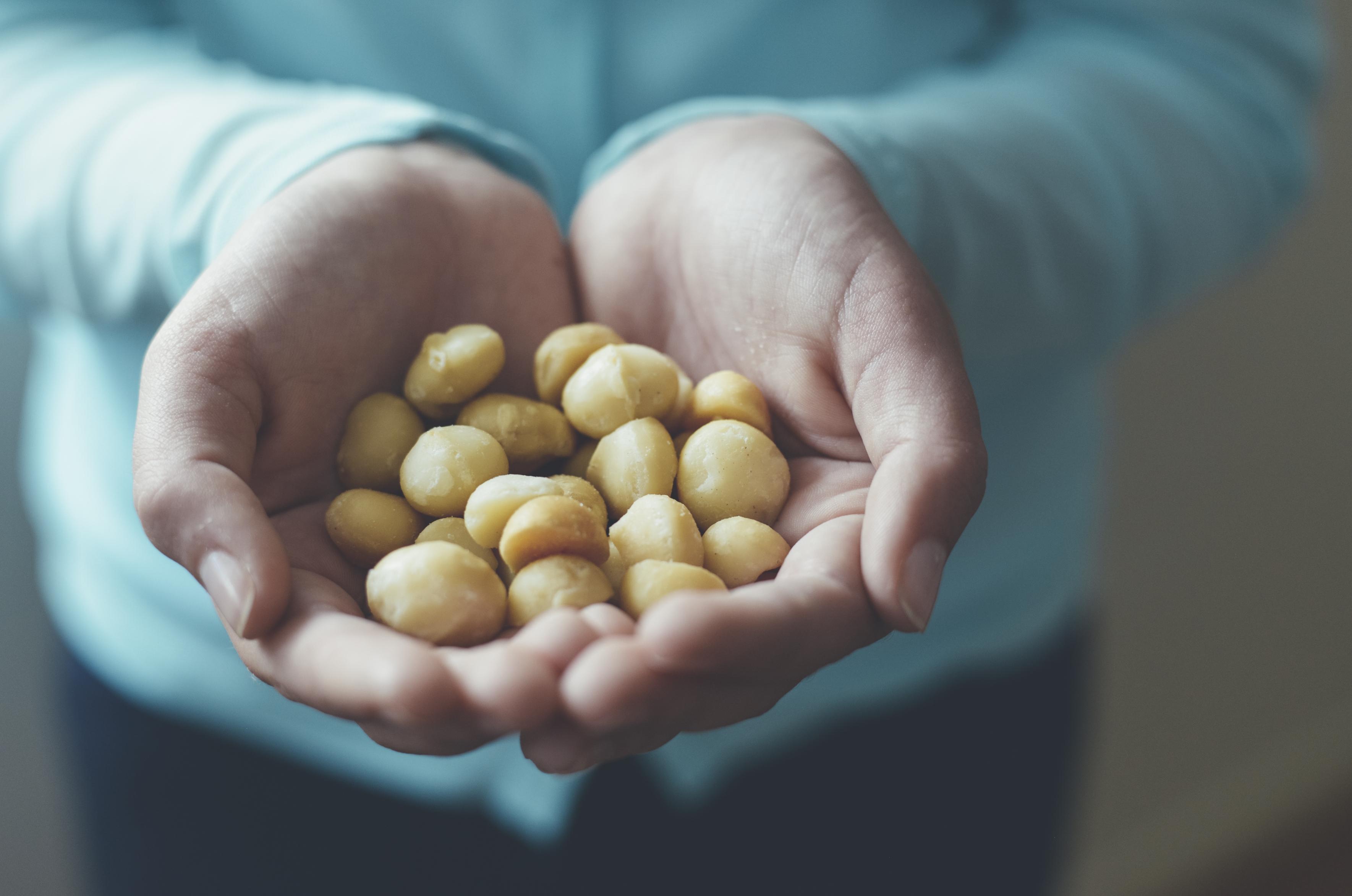 Tag der Vegetarier: Die Macadamia feiert mit!