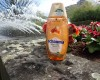 Store-Check Vol. 11: Schauma Natural Moments Macadamia-Shampoo