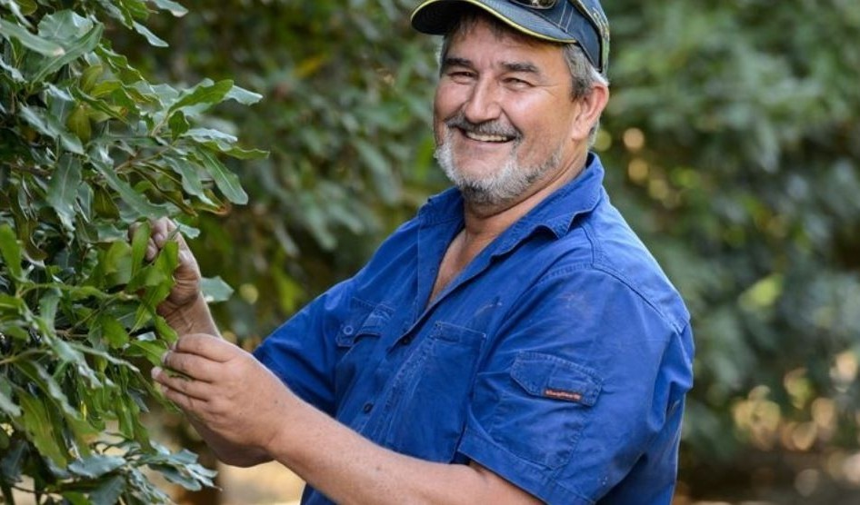 Macadamia Insights: Unser Farmer Andrew Wallis