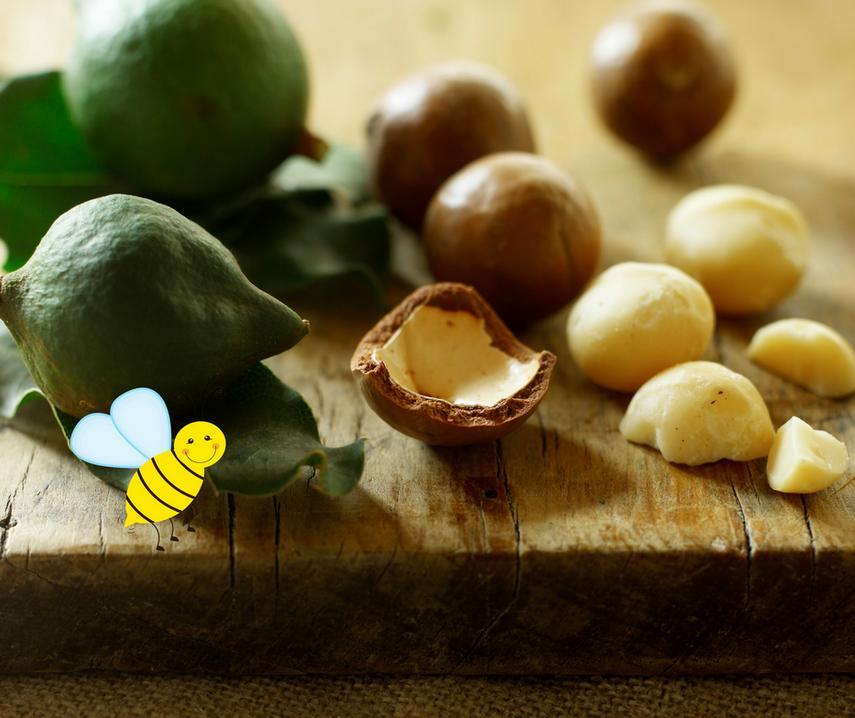 Nachhaltigkeit: Happy Bees und Macadamias