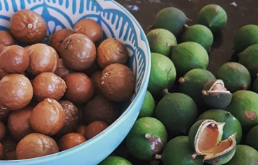 Healthy Habits: Clean Eating mit Macadamias