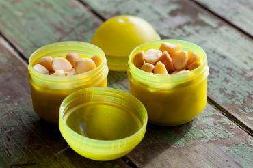 Länger und glücklicher leben mit Macadamias