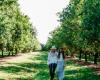 Internationaler Frauentag mit Australischen Macadamias
