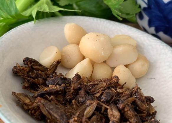 Macadamias mit … Mehlwürmern?