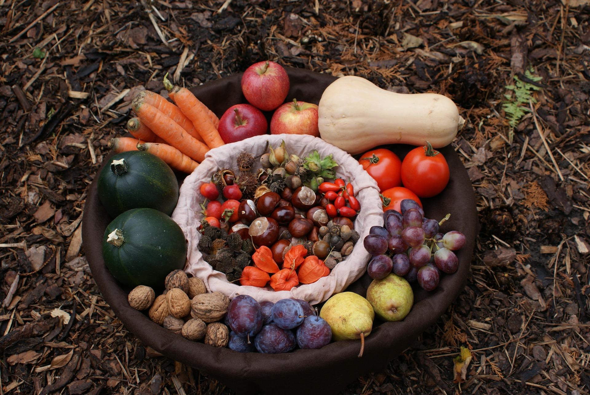 Nachhaltigkeit im Herbst: Saisonales Obst und Gemüse