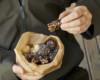 Leckere To-Go-Snacks mit Macadamias