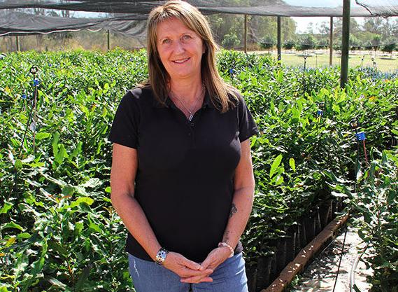 Frauenpower in der Macadamia-Industrie: Lorraine Gorza